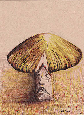 Mixed Media - Mr. Mushroom In A Cranberry Bog by John Small