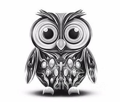 Mr. Owl Original