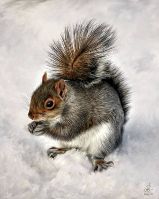 Photograph - Mr. Squirrel by Pennie  McCracken