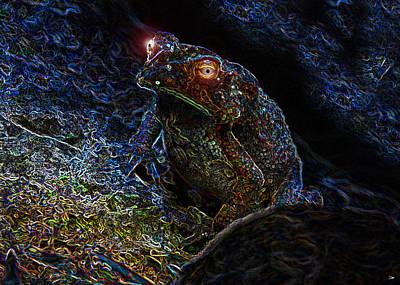 Mr Toads Wild Eyes Art Print by David Lee Thompson