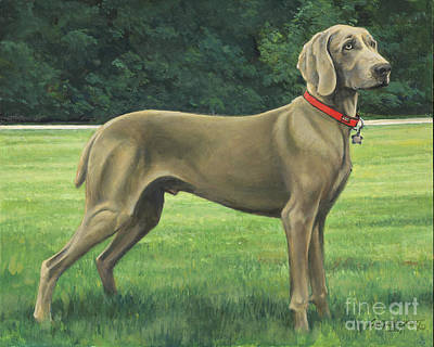 Weimaraner Painting - Mr. Turk by Don Langeneckert