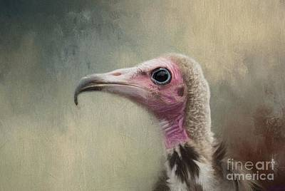 Vulture Mixed Media - Mr Ugly by Eva Lechner