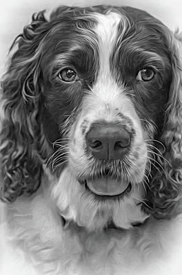 Canines Digital Art - Ms Kaya 3 - Paint Bw by Steve Harrington