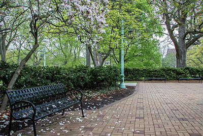 Photograph - Msu Bench In Spring  by John McGraw