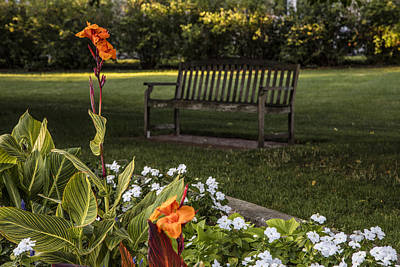 Msu Flower And Bench Art Print by John McGraw