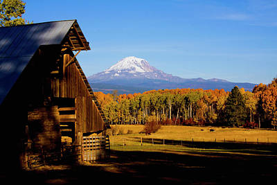 Photograph - Mt Adams Barn by Craig Strand