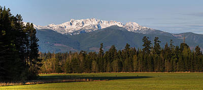 Photograph - Mt Arrowsmith by Randy Hall