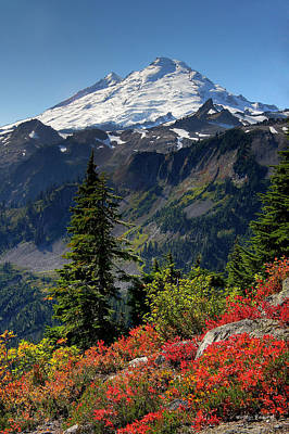 Peaks Photograph - Mt. Baker Autumn by Winston Rockwell