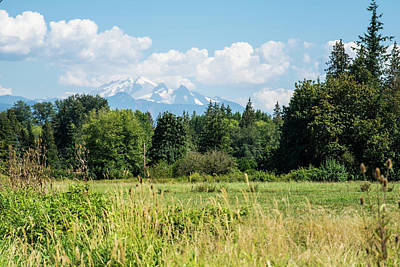 Photograph - Mt Baker On August 12 by Tom Cochran