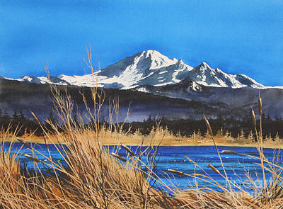 Williamson County Painting - Mt Baker Wiser Lake by James Williamson