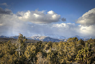 Photograph - Mt Charleston Snow Storm by Robert Melvin