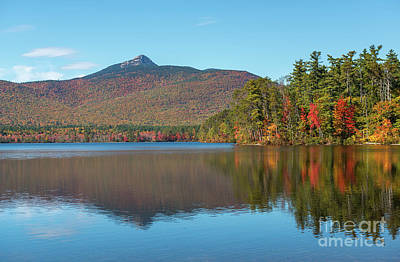 Photograph - Mt Chocorua In Autumn by Sharon Seaward