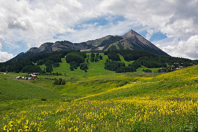 Mt. Crested Butte Art Print by Aaron Spong