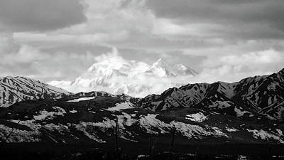Photograph - Mt. Denali In Her Glory  Black And White by Judy Wanamaker