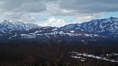 Photograph - Mt. Denali View 2 by Judy Wanamaker