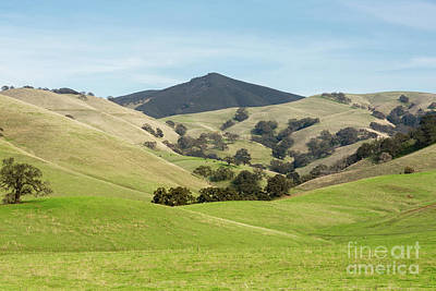 Mt Diablo State Park Nature Art Print by Yuval Helfman