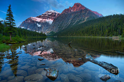Photograph - Mt Edith Cavell Sunrise Glow by Adam Jewell