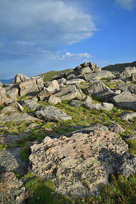 Photograph - Mt. Evans Boulder Field by Ray Mathis