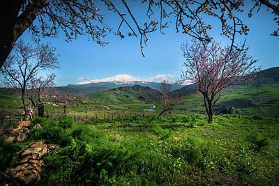 Photograph - Mt Fuji Or Mt Etna?  by Emilio Messina