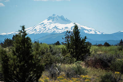 Photograph - Mt Hood Above The High Desert by Tom Cochran