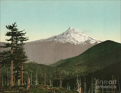 Mt Hood Painting - Mt. Hood by Celestial Images