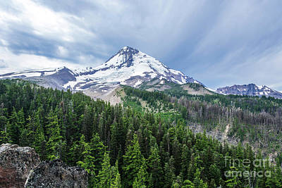 Mt Hood From Cloud Cap Art Print by Linda Steider
