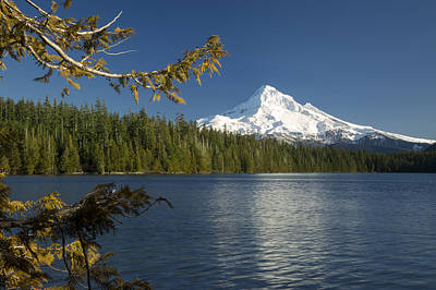 Photograph - Mt Hood From Lost Lake by Brian Jannsen