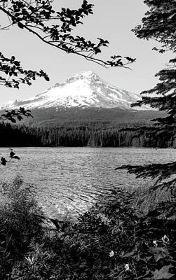 Photograph - Mt. Hood In Oregon Bw by Athena Mckinzie