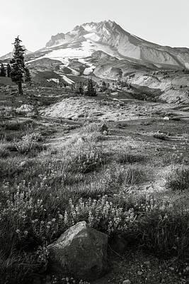 Photograph - Mt. Hood Scenic  by Athena Mckinzie