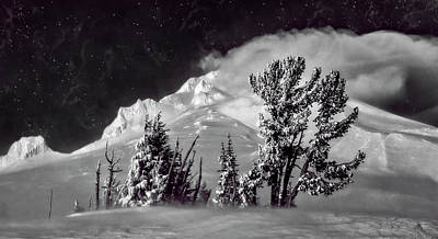 Photograph - Mt Hood Starry Night by Wes and Dotty Weber