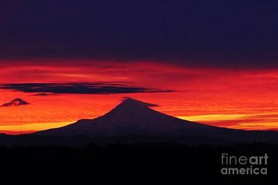 Mt Hood Digital Art - Mt. Hood Sunrise  by Nick Gustafson