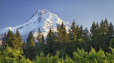 Photograph - Mt. Hood Sunset by Chris Reed