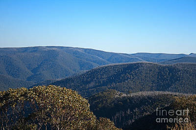 Photograph - Mt Hotham In Autumn by Joy Watson