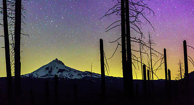 Art Print featuring the photograph Mt. Jefferson Bathed In Auroral Light by Cat Connor