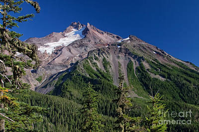 Tim Moore Photograph - Mt. Jefferson From The Whitewater Trail by Moore Northwest Images