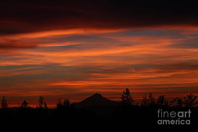 Tree Photograph - Mt. Jefferson Sunset by Gary Wing