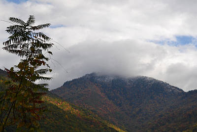 Photograph - Mt Leconte Snow by rd Erickson