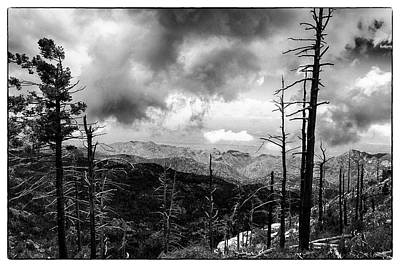 Photograph - Mt Lemmon Trailhead by Chris Smith