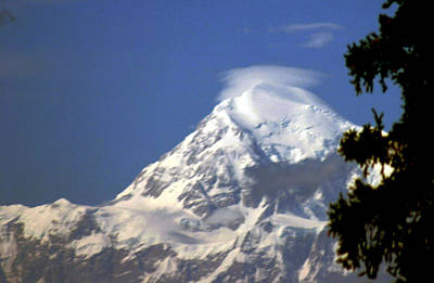 Photograph - Mt. Mckinley From 60 Miles Away by Jack G  Brauer