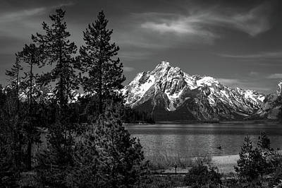Photograph - Mt. Moran And Trees by Stephen Holst