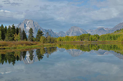 Photograph - Mt. Moran From Oxbow Bend by Frank Madia