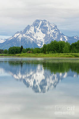Photograph - Mt Moran In Grand Teton National Park Reflection by Ronda Kimbrow