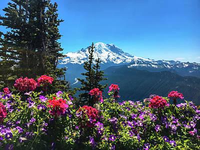 National Photograph -  Mt Rainier  by Art Spectrum