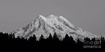 Photograph - Mt. Rainier In Black And White by Patricia Strand