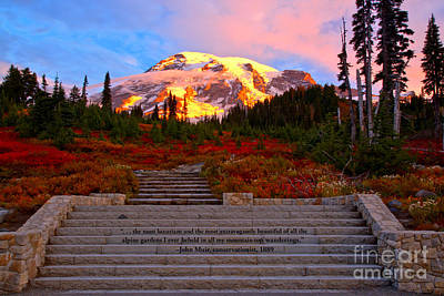 Photograph - Mt Rainier Morning Glow by Adam Jewell