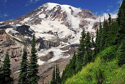 Photograph - Mt Rainier Nisqually Glacier by Greg Sigrist