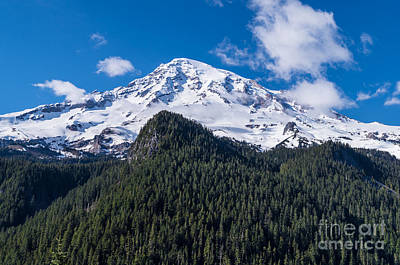 Photograph - Mt. Rainier by Patrick Fennell