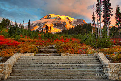 Photograph - Mt Rainier Sunkiss by Adam Jewell