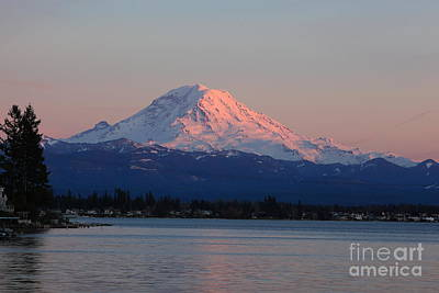 Photograph - Mt Rainier Sunset by Peter Simmons
