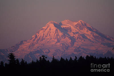 Mt. Rainier Washington Art Print by Robert  Torkomian